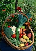 Korb mit frisch geerntetem Gemüse und Obst im Garten