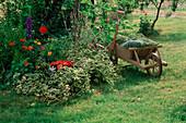 Kleines Blumenbeet neben Holzschubkarre mit Rasenschnitt, Laubrechen und Spaten