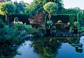 Sitzplatz auf Holzdeck am Teich , Agave attenuata, Acer palmatum (Fächerahorn), Robinia 'Umbraculifera' (Kugelrobinie), Buxus (Buchs), Hecke als Sichtschutz, Ufer mit Gräsern und Stauden, Natursteine