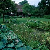 Hosta (Funkien) als Uferbepflanzung , Pontederia cordata (Hechtkraut), Sagittaria latifolia (Pfeilkraut), Oenanthe aquatica (Wasserfenchel), Menyanthes trifoliata (Fieberklee), Sitzgruppe auf dem Rasen unter Laubbaum