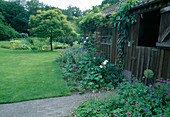 Staudenbeet am Gartenhaus : Geranium (Storchschnabel), Allium (Zierlauch), Rosa (Rosen), Castanea sativa (Esskastanie, Marone) im Rasen, darunter Sitzgruppe