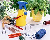 Gerätestilleben mit Gartenschere