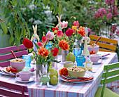 Frühstückstisch mit Tulipa (versch. Tulpen)