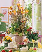 Buntes Oster-Arrangement mit Tulpen, Ginster und Schneeball