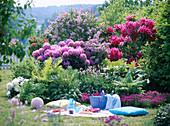 Picknickplatz: Rhododendron