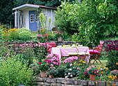 Garten mit Liriodendron (Tulpenbaum)