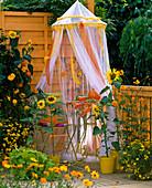 Balkon mit Sonnenblumen und Sitzplatz unter Moskitonetz