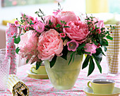 Paeonia (rosa Pfingstrosen)