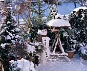 Balkon IM Winter mit ILEX AQUIFOLIUM, Taxus BACCATA (Taxus), PICEA Excelsa, Pi
