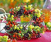 Beerenkranz aus: Vitis (Weintrauben)