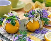 Citrus limon (Zitronen)