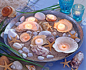 Zinkschale mit Sand, Muscheln, Steinen....