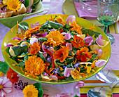Eßbare Blüten: Salat mit Tropaeolum (Kapuzinerkresse)