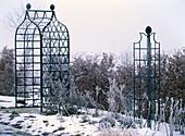 Winterlandschaft: Hecke von Carpinus (Hainbuche), Rosenbogen