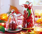Malus (Apfel, Zieräpfel) unter Glasglocken, Windlichter