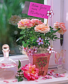Rosa (Topfrose) in Übertopf mit Serviettentechnik, Sisal, Karaffe, Glasblüten