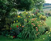 LAUNA SLATTERS Garden, OXFORDSHIRE: BORDER with DAHLIA 'BISHOP of LLANDAF', HEMEROCALLIS AND HELIANTHEMUM