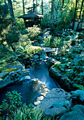 WATERFALL TUMBLE DOWN A HILL INTO THE KOi POND with INDONESIAN GAZEBO Beside IT IN THE WOODLAND DESIGNERS: ILGA JANSONS AND MIKE DRYFOOS, Seattle, USA