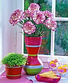 Strauß aus Dianthus (Nelken, pink - weiß)