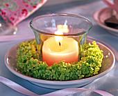 Kerzenkranz aus grünen Schneeballblüten: 3/3