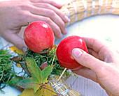 Kranz aus Äpfeln und Amberlaub: 2/3