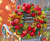 Kranz aus Äpfeln und Amberlaub: 3/3