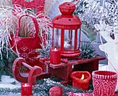 Rote Laterne auf rotem Schlitten, dekoriert mit Pinus (Kiefer)