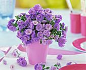 Strauß aus gefüllter Campanula carpatica (Karpatenglockenblume) in rosa Vase