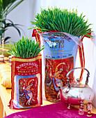 Triticum (Weizen) in Reissäcke gepflanzt, Teekanne, Duftflakons