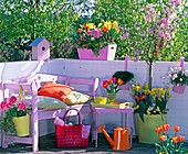 Vorher-Nachher-Balkon in rosa: 2/2