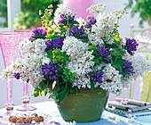 Strauß aus Syringa (Flieder), Campanula glomerata (Knäuelglockenblume)