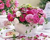 Rosa gallica 'Officinalis' (Historische Rosen)