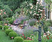 Rosengarten am Haus