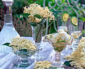 Blüten von Sambucus (Holunder) in Gläsern, Schale mit Holunderblüten-Eiswürfeln