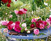 Rosa (Rosen, rosa, pink und rot) in Gläsern und auf Holztablett, blauer Tisch