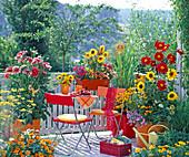 Balkon mit Dahlia (Dahlien), Helianthus (Sommerblumen), Antirrhinum