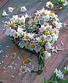 Herz aus Argyranthemum (Margeriten), Campanula (Glockenblumen, weiß)