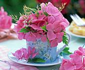 Rosa Hydrangea (Hortensien), Gräser in hellblauer Espressotasse