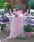 Lavandula (Lavendel) in rosa Relieftöpfen vor und auf weißem Tisch, Stühle