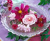 Blüten von Cosmos (Schmuckkörbchen), Dianthus (Nelken), Lychnis