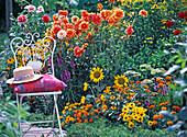 Metallstuhl am orangen Sommerblumenbeet