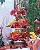 Etagere gefüllt mit Blüten von Dahlia (Dahlien) und Aesculus (Kastanien)