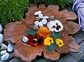 Blüten von Stiefmütterchen im Wasser