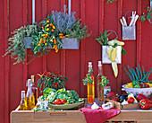 Outdoor - Küche : Kräuter, Gemüse, Essig, Öl, Besteck