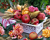 Erntedank mit Äpfeln und Getreide
