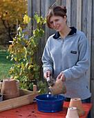 Frau reinigt Tontöpfe mit Bürste und Wasser