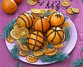 Citrus (Orangen) mit Gewürznelken gespickt, Cupressus (Arizonazypresse)