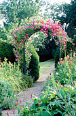 THE PRIORY, BEECH HILL, Berkshire: THE HERBACEOUS BORDER with WOODEN ARCH PLANTED with an AMERICAN PILLAR ROSE