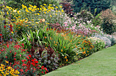 COLOURFUL HERBACEOUS BORDERS at THE PRIORY, KEMERTON, HEREFORD & Worcester with HELENIUMS, DAHLIAS & CROCOSMIA