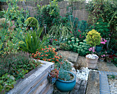 VIEW ACROSS ROBIN Green AND RALPH CADE'S SEASIDE STYLE Garden, LONDON. Old Garden TOOLS HIDE AMONGST Gaillardia 'KOBOLD', Palms, AND an Old WOODEN Herb SEAT
